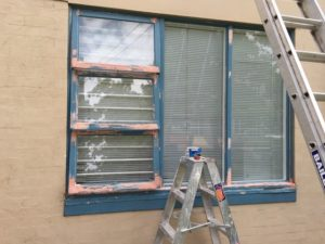 Canberra Painting and windows restoration